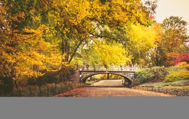 Фото обои осень, листья, деревья, мост, парк, путь, люди