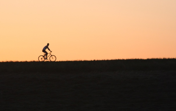 Фото обои велосипедист, bike, поле, ride, вечер, sunset