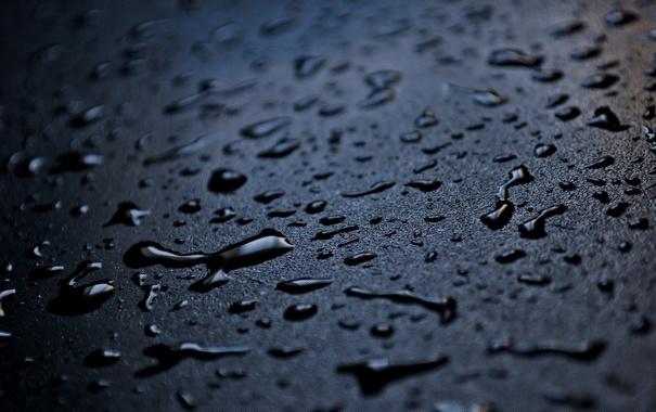 Фото обои капли, фон, вода, резкость