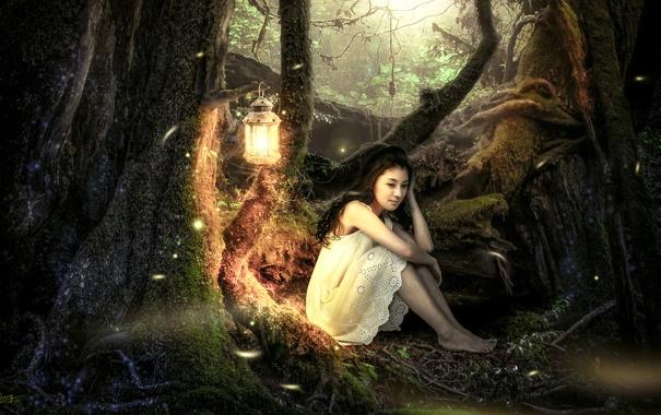 Фото обои лес, девушка, деревья, фонарь