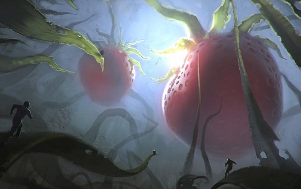 Фото обои трава, свет, ягоды, люди, растения, клубника, арт