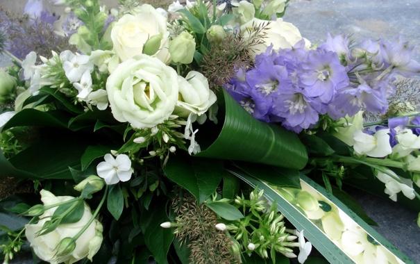 Фото обои листья, любовь, цветы, природа, розы, красота, букет