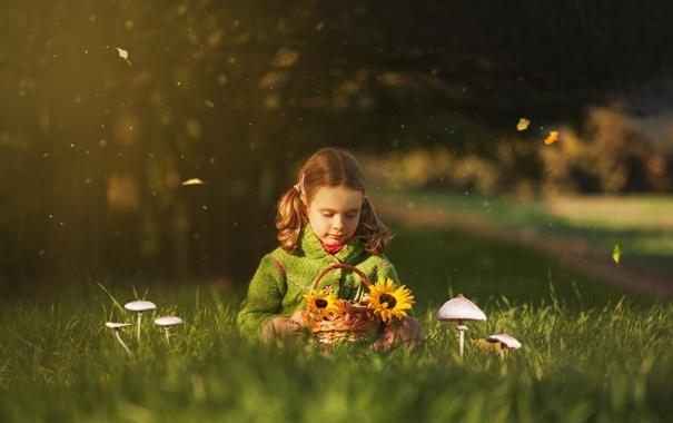 Фото обои природа, девочка, боке
