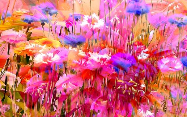 Фото обои линии, цветы, природа, рендеринг, краски, лепестки
