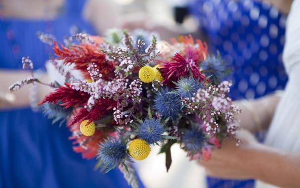 Фото обои цветы, букет, лепестки