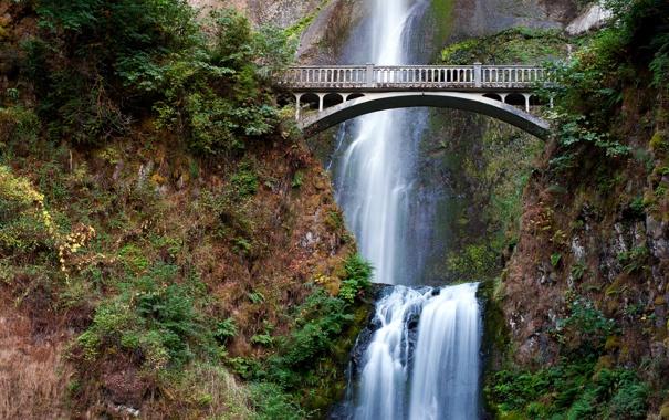 Фото обои зелень, трава, вода, деревья, пейзаж, мост, природа