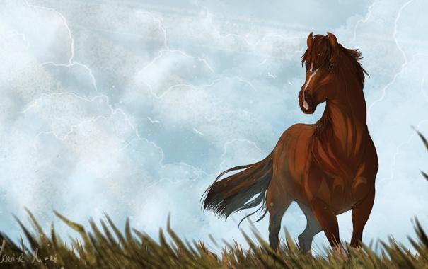 Фото обои небо, трава, животное, лошадь, арт, грива, хвост