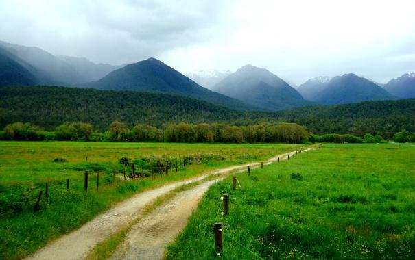Фото обои дорога, зелень, трава, деревья, горы