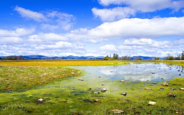 Фото обои лес, небо, трава, облака, горы, природа, камни