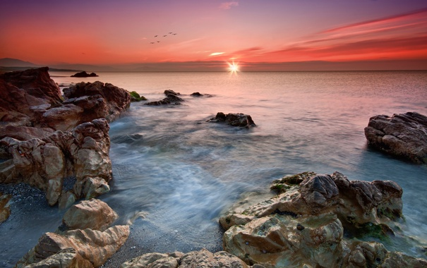 Фото обои море, небо, закат, птицы, камни
