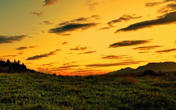 Фото обои небо, трава, природа, пейзажи, вечер, закат солнца