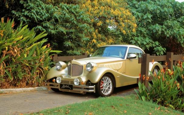Фото обои авто, машины, классика, деревья., bufori