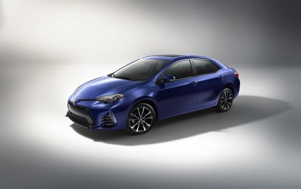 Фото обои белый фон, Toyota, тойота, королла, Corolla
