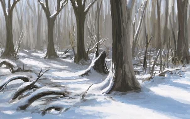 Фото обои зима, лес, снег, деревья, природа, арт, тени