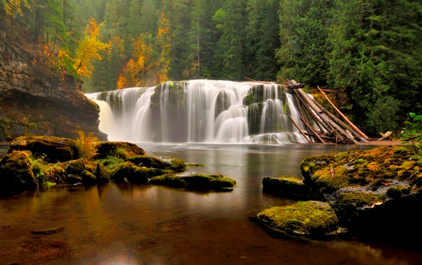 Фото обои осень, лес, деревья, камни, водопад, мох, Вашингтон