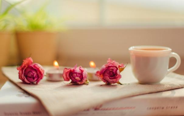 Фото обои цветы, розы, свечи, чашка, книга, розовые
