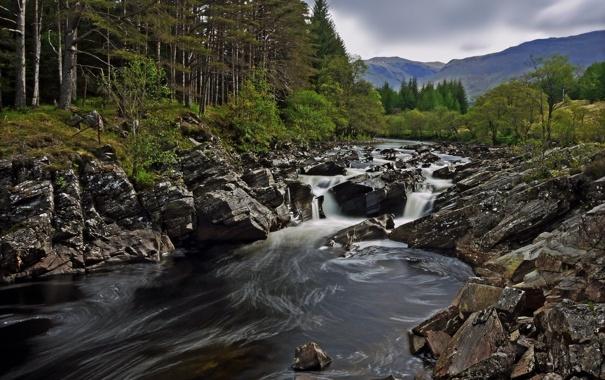 Фото обои лес, горы, река, камни, Шотландия, Scotland, River Orchy
