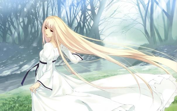 Фото обои лес, трава, взгляд, девушка, река, аниме, платье