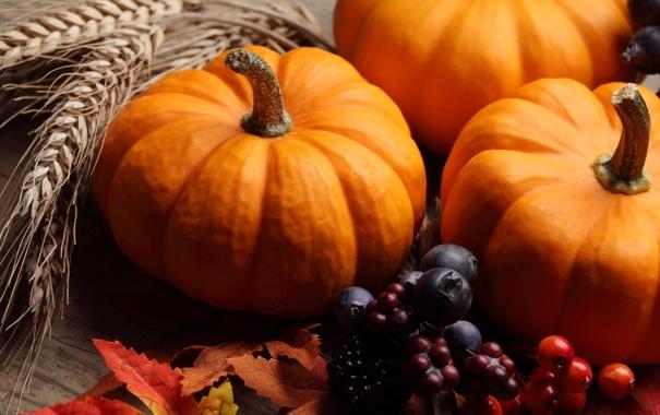 Фото обои осень, ягоды, желтые листья, черника, тыква, колосья