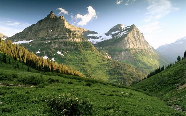 Фото обои зелень, горы, склоны, утро, лесок