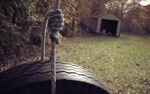 Фото обои лес, поляна, фокус, колесо, канат, домик, верёвка
