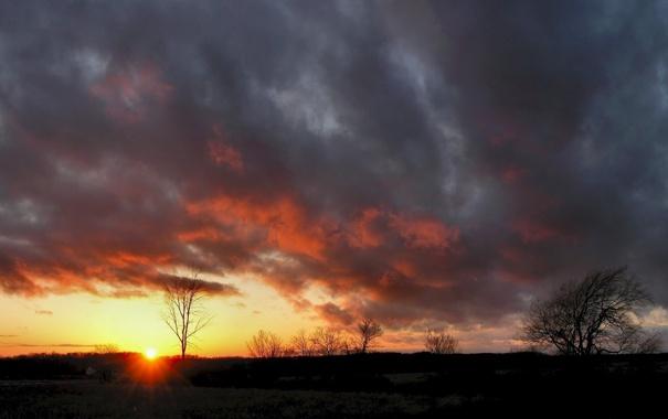 Фото обои поле, небо, солнце, облака, деревья, пейзаж, закат