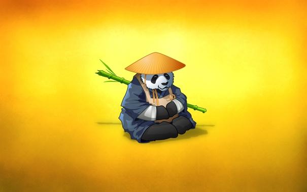 Фото обои животное, ветка, шляпа, бамбук, медведь, панда, монах