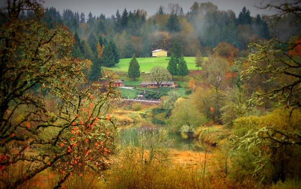 Фото обои лес, осень, трава, небо, пруд, домик, дым