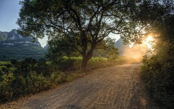 Фото обои дорога, лучи, свет, деревья, природа, пейзажи, дороги