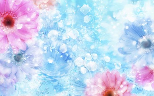 Фото обои цветы, блеск, лепестки