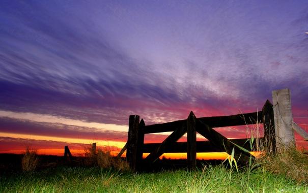 Фото обои небо, трава, закат