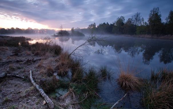 Фото обои пейзаж, туман, река, утро