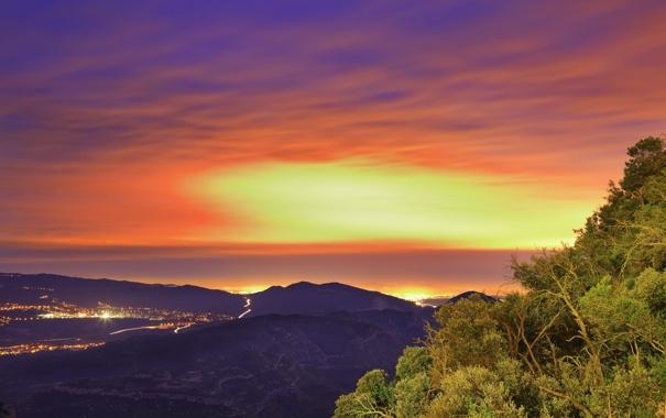 Фото обои небо, листья, деревья, город, огни