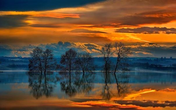 Фото обои небо, вода, облака, деревья, закат, тучи, природа