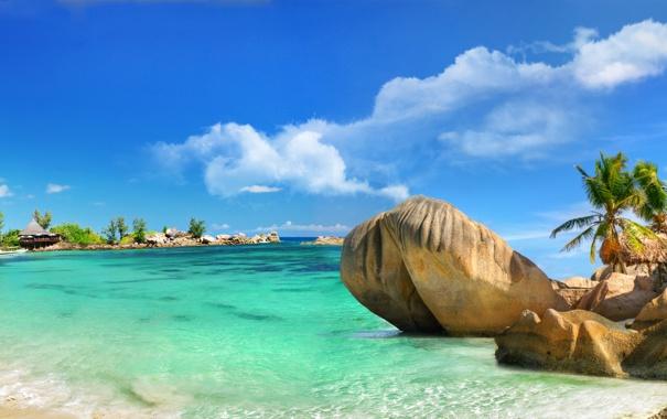 Фото обои песок, море, пляж, тропики, камни, пальмы, побережье