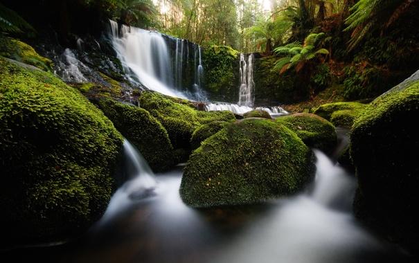 Фото обои природа, камни, водопад, мох, Australia, Tasmania, Horseshoe Falls