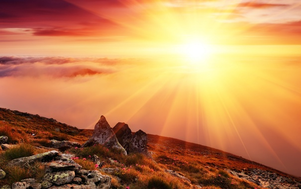 Фото обои небо, трава, солнце, облака, лучи, цветы, горы