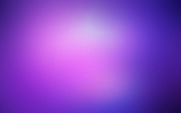 Фото обои фиолетовый, цвета, blueberry