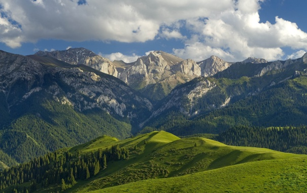 Фото обои небо, трава, облака, деревья, горы, Китай