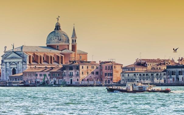 Фото обои вода, птица, дома, катер, Италия, Венеция