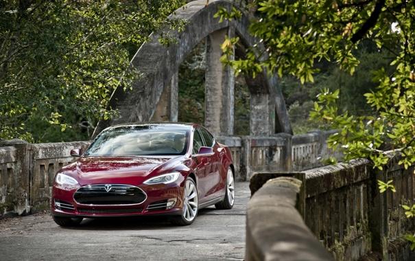 Фото обои деревья, красный, мост, седан, передок, Tesla, Тесла