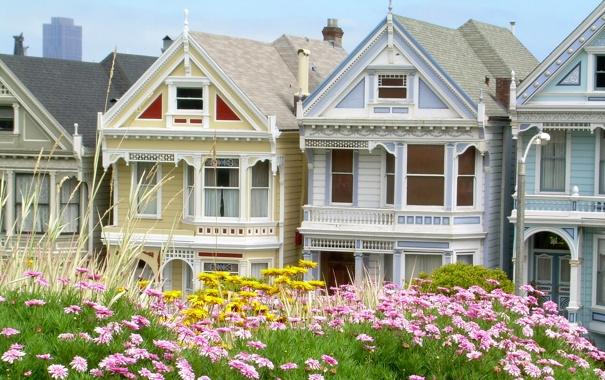 Фото обои цветы, дом, Калифорния, Сан-Франциско, коттедж, San Francisco, Сша
