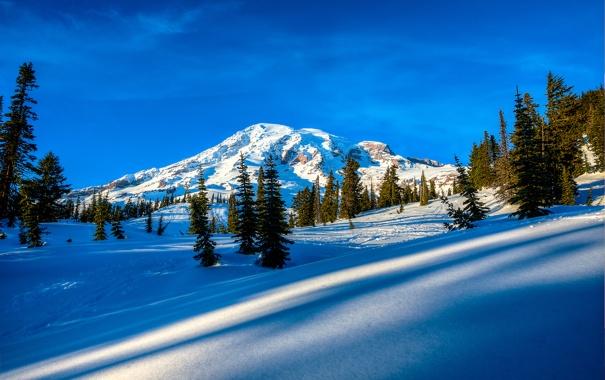 Фото обои зима, небо, облака, снег, деревья, горы, ель