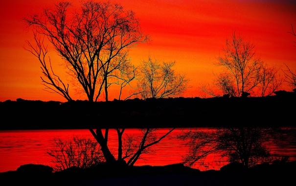 Фото обои небо, деревья, закат, природа, река, зарево