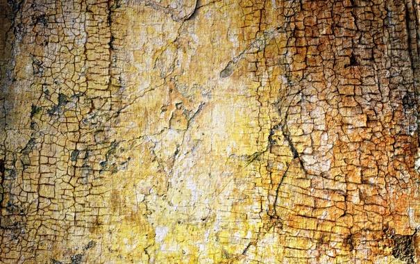 Фото обои стена, текстура, фон, цвет