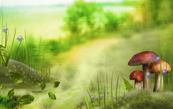 Фото обои листья, грибы, трава, лето, фон, зелень, рисунок