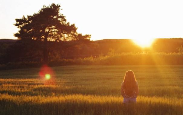 Фото обои поле, лето, девушка, закат, настроение