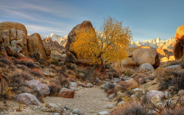 Фото обои осень, небо, облака, закат, горы, камни, дерево