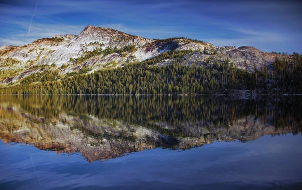 Фото обои лес, небо, вода, отражение, гора