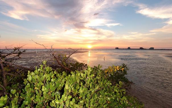 Фото обои закат, пейзаж, небо, фото, США, побережье, Флорида